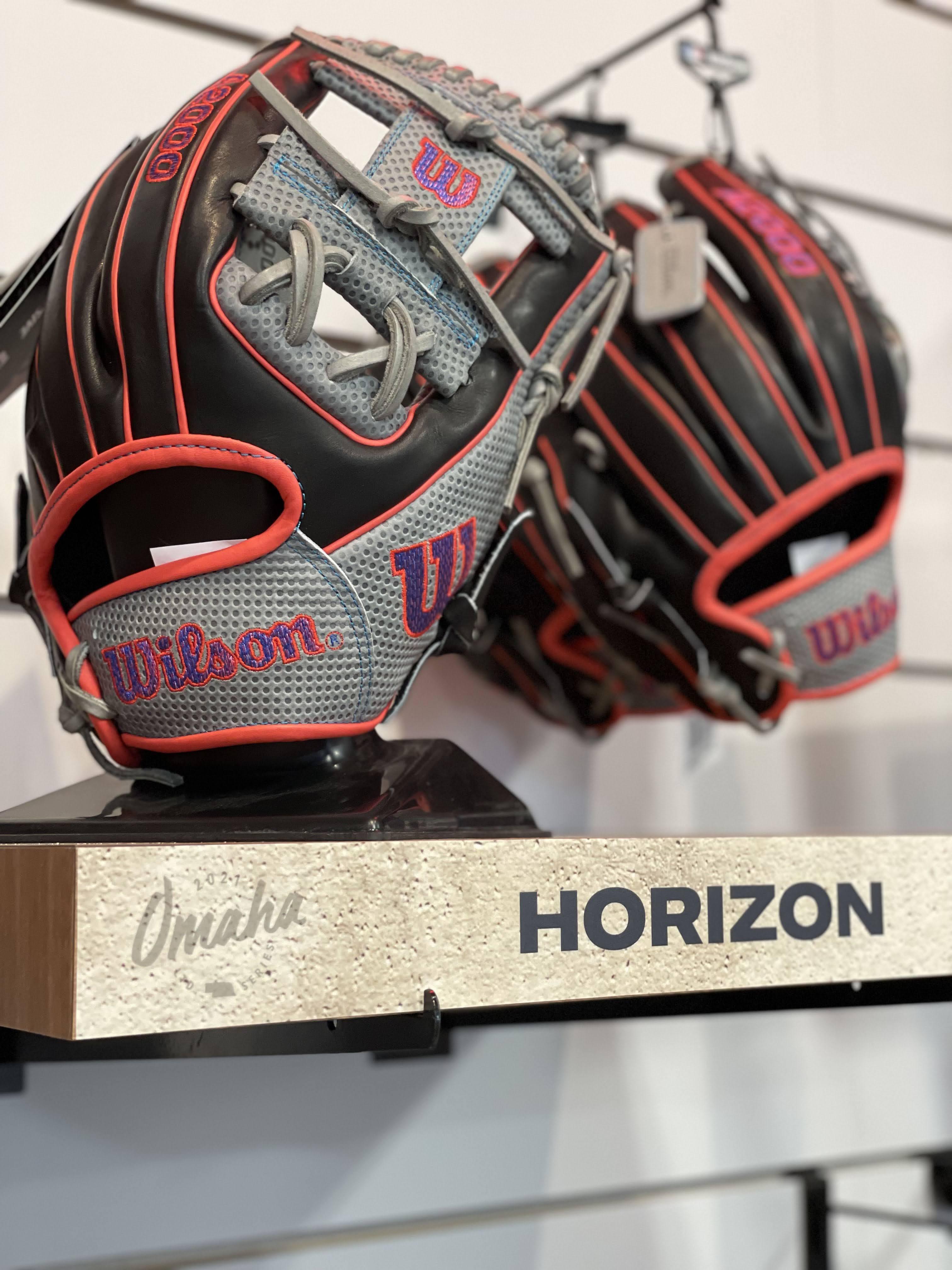 Horizon glove